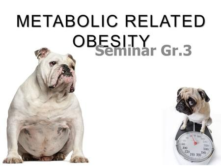METABOLIC RELATED OBESITY