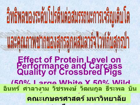 Effect of Protein Level on Performance and Carcass Quality of Crossbred Pigs (50% Large White X 50% Wild Boar) อินทร์ ศาลางาม วัชรพงษ์ วัฒนกูล ธีระพล.