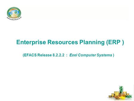 Enterprise Resources Planning (ERP ) (EFACS Release 8.2.2.2 : Exel Computer Systems )