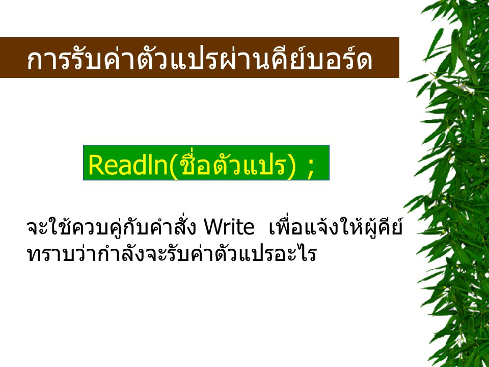 Write('Input your Id = '); Readln(Id); Write('What is your name = '); Readln(name); Write('Age = '); Readln(age);