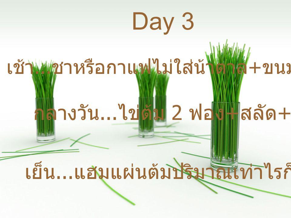 เย็น...ผลไม้และโยเกริ์ตรสธรรมชาติ Day 4 เช้า...