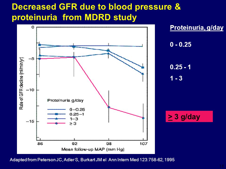 18 Adapted from Peterson JC, Adler S, Burkart JM el Ann Intern Med 123:758-62, 1995 Decreased GFR due to blood pressure & proteinuria from MDRD study Proteinuria, g/day 0 - 0.25 0.25 - 1 1 - 3 > 3 g/day