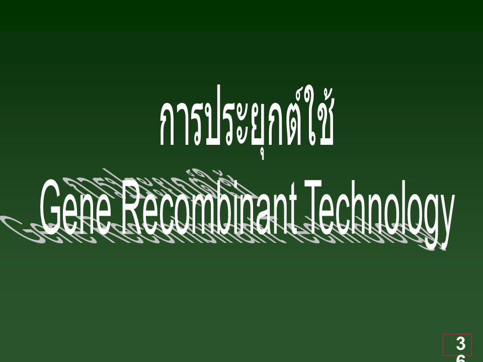 37 Application ของ Gene Recombinant Technology 1.
