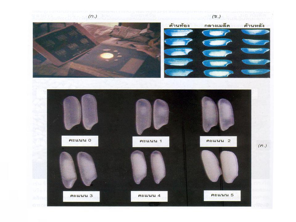 Non-irradiated sample Irradiated sample