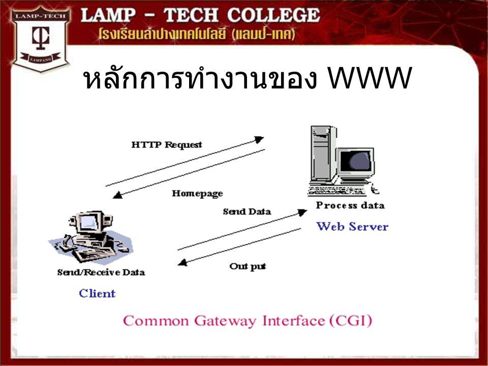 ประเภทโปรแกรมบนเว็บ Static Programming เป็นเว็บที่ไม่ค่อยมีการ เปลี่ยนของข้อมูลในการพัฒนาเว็บเพจ ผู้พัฒนา ไม่ต้องมีความรู้ในการเขียนโปรแกรมก็ได้ เพียง ใช้โปรแกรมสำเร็จรูปสร้างเว็บเพจก็เพียงพอ แล้ว Dynamic Programming เหมาะสำหรับเว็บที่ ต้องมีการเปลี่ยนแปลงข้อมูลบ่อยหรือเว็บที่มี การจัดเก็บข้อมูลภายในฐานข้อมูล ในการ พัฒนาเว็บต้องอาศัยผู้ที่มีความรู้ในการเขียน โปรแกรม