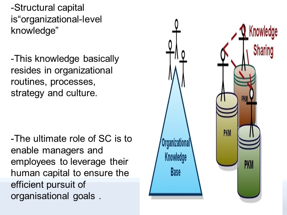 Structural capital forms the supportive infrastructure, processes, and databases of the organisation that enable human capital to function.