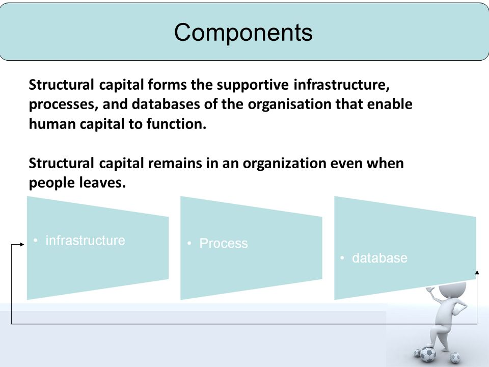 Classification structural capital organization capital organization culture organization system process capital technique program procedure innovation capital patent management brand management