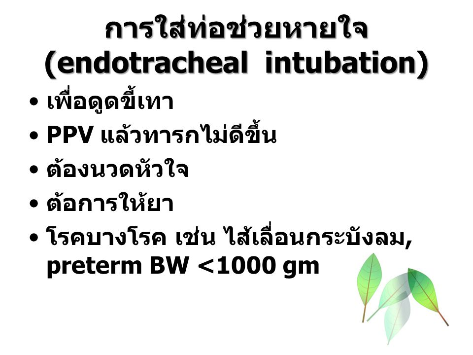 Endotracheal tube placement GA (wk)BW (gm)Blade No.