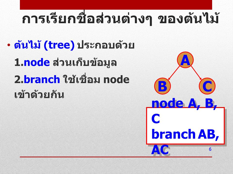 root หมายถึง node แรกของ tree 7 A BC root A โหนดอื่นๆ B, C root A โหนดอื่นๆ B, C node A มี degree เท่ากับ 2 node B มี degree เท่ากับ 0 node C มี degree เท่ากับ 0 node A มี degree เท่ากับ 2 node B มี degree เท่ากับ 0 node C มี degree เท่ากับ 0 Degree หมายถึง จำนวน subtree ที่สัมพันธ์ กับ Node นั้นๆ