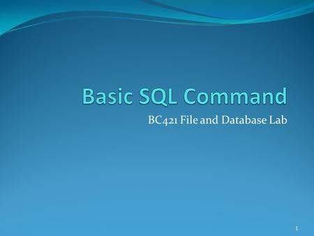 BC421 File and Database Lab