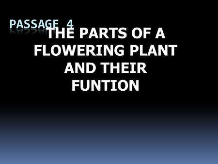 THE PARTS OF A FLOWERING PLANT AND THEIR FUNTION.
