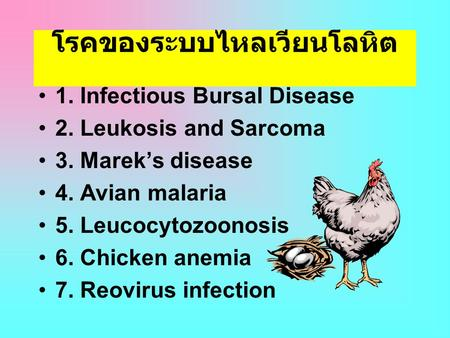 โรคของระบบไหลเวียนโลหิต •1. Infectious Bursal Disease •2. Leukosis and Sarcoma •3. Marek's disease •4. Avian malaria •5. Leucocytozoonosis •6. Chicken.