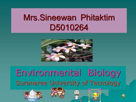 Mrs.Sineewan Phitaktim D5010264 Environmental Biology Suranaree University of Tecnology.