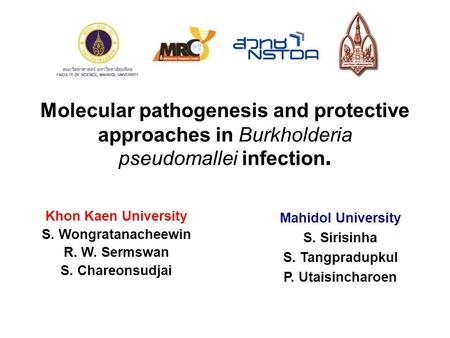 Molecular pathogenesis and protective approaches in Burkholderia pseudomallei infection. Khon Kaen University S. Wongratanacheewin R. W. Sermswan S. Chareonsudjai.