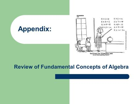 Appendix: Review of Fundamental Concepts of Algebra.