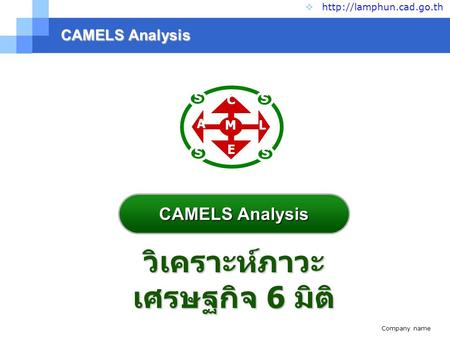 Company name  CAMELS Analysis   วิเคราะห์ภาวะ เศรษฐกิจ 6 มิติ S S S S C A E L M CAMELS Analysis.