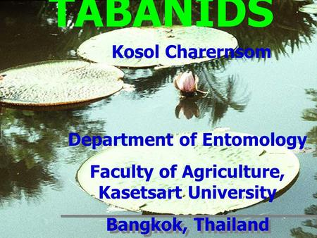 Department of Entomology Faculty of Agriculture, Kasetsart University Bangkok, Thailand Department of Entomology Faculty of Agriculture, Kasetsart University.