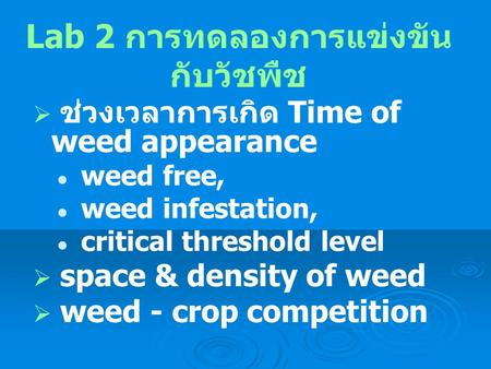 Lab 2 การทดลองการแข่งขัน กับวัชพืช  ช่วงเวลาการเกิด Time of weed appearance weed free, weed infestation, critical threshold level  space & density of.