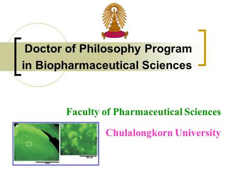 Doctor of Philosophy Program in Biopharmaceutical Sciences Faculty of Pharmaceutical Sciences Chulalongkorn University.