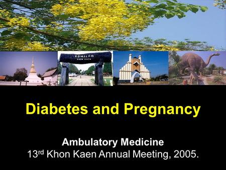 Diabetes and Pregnancy Ambulatory Medicine 13 rd Khon Kaen Annual Meeting, 2005.