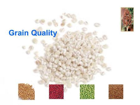 Grain Quality. 1. To understand a meaning of grain qualities 2. To understand grain quality for trade 3. To understand each grain quality Objectives.