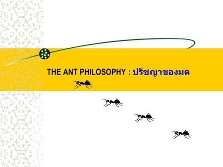 THE ANT PHILOSOPHY : ปรัชญาของมด. 1 st PART PHILOSOPHY: ปรัชญาที่ 1 ANTS NEVER QUIT มดไม่เคยละความพยายาม If they're headed somewhere and you try to stop.