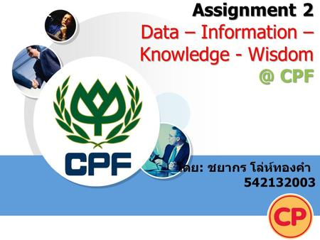 Assignment 2 Data – Information – Knowledge - CPF