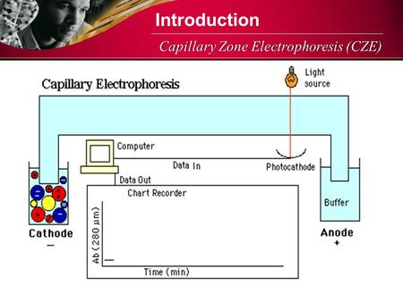 Capillary Zone Electrophoresis (CZE) Introduction.
