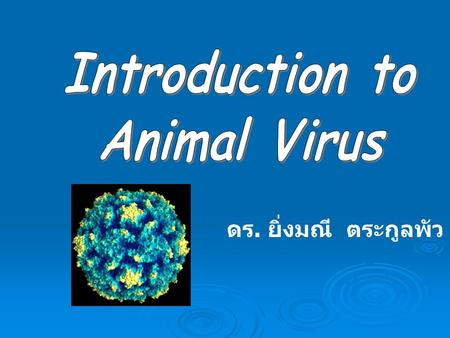 Introduction to Animal Virus