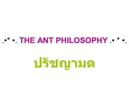 .•* •. THE ANT PHILOSOPHY .• * •.