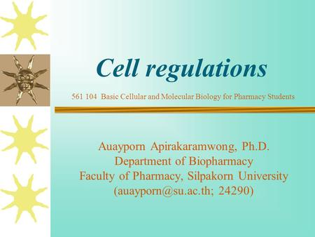 Cell regulations Auayporn Apirakaramwong, Ph.D. Department of Biopharmacy Faculty of Pharmacy, Silpakorn University 24290) 561 104.