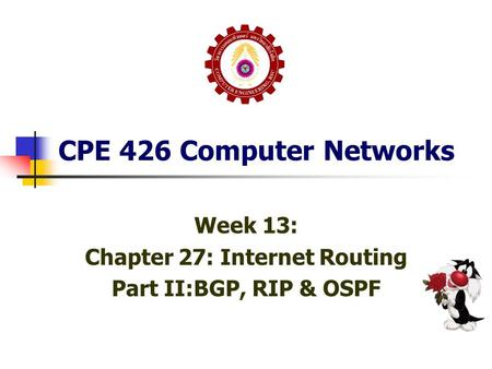CPE 426 Computer Networks Week 13: Chapter 27: Internet Routing Part II:BGP, RIP & OSPF.