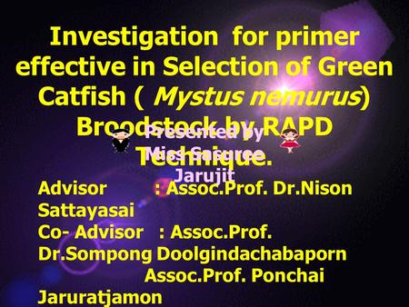 Investigation for primer effective in Selection of Green Catfish ( Mystus nemurus) Broodstock by RAPD Technique. Presented by Miss Sasuree Jarujit Advisor.