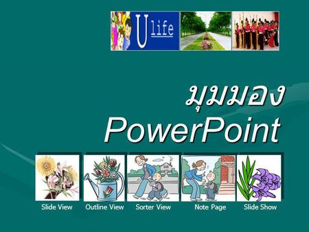 มุมมอง PowerPoint Slide View Outline View Sorter View Note Page