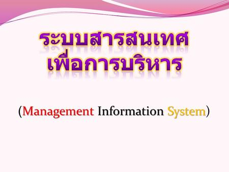 ManagementInformationSystem (Management Information System)