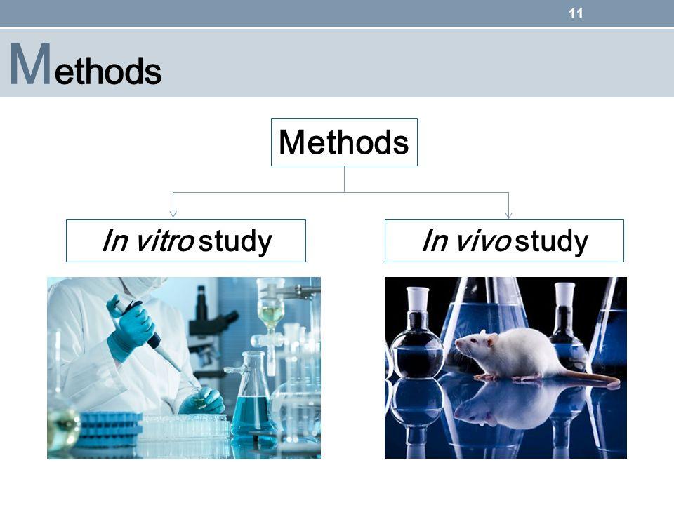 Methods Methods In vitro study In vivo study