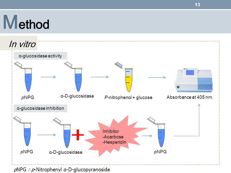 Method In vitro pNPG : p-Nitrophenyl α-D-glucopyranoside