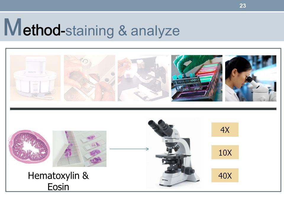 Method-staining & analyze