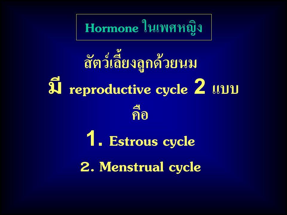 สัตว์เลี้ยงลูกด้วยนม มี reproductive cycle 2 แบบ