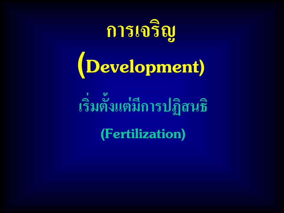 การเจริญ(Development) เริ่มตั้งแต่มีการปฏิสนธิ (Fertilization)