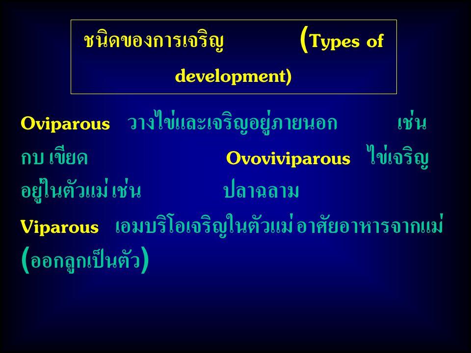 ชนิดของการเจริญ (Types of development)