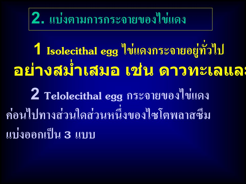 2. แบ่งตามการกระจายของไข่แดง