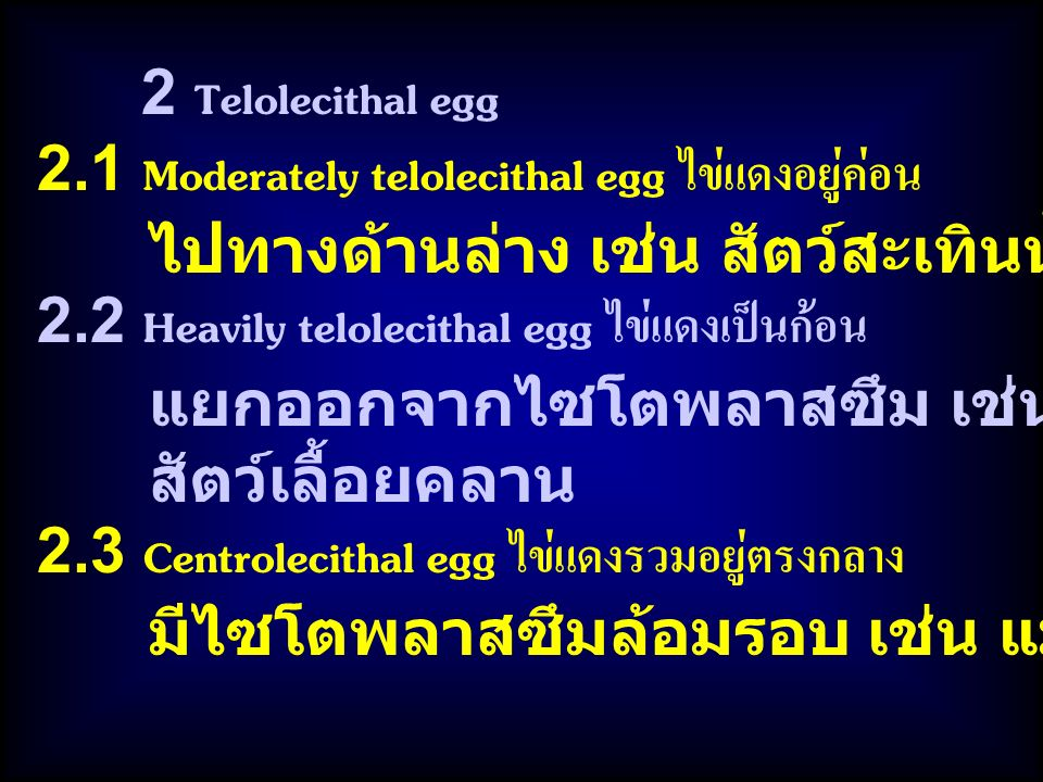 2.1 Moderately telolecithal egg ไข่แดงอยู่ค่อน