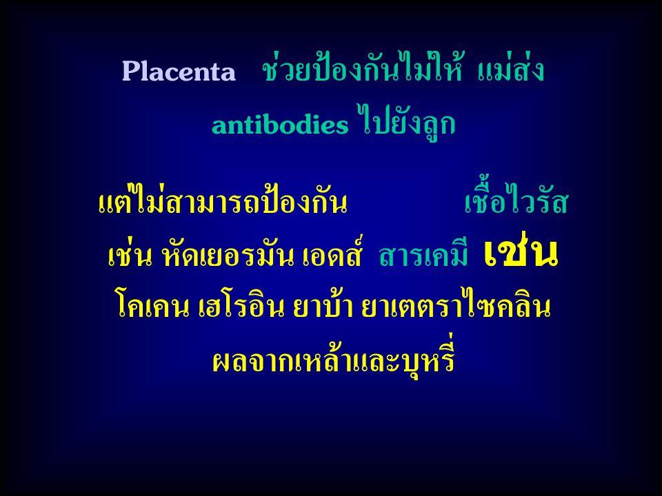 Placenta ช่วยป้องกันไม่ให้ แม่ส่ง antibodies ไปยังลูก