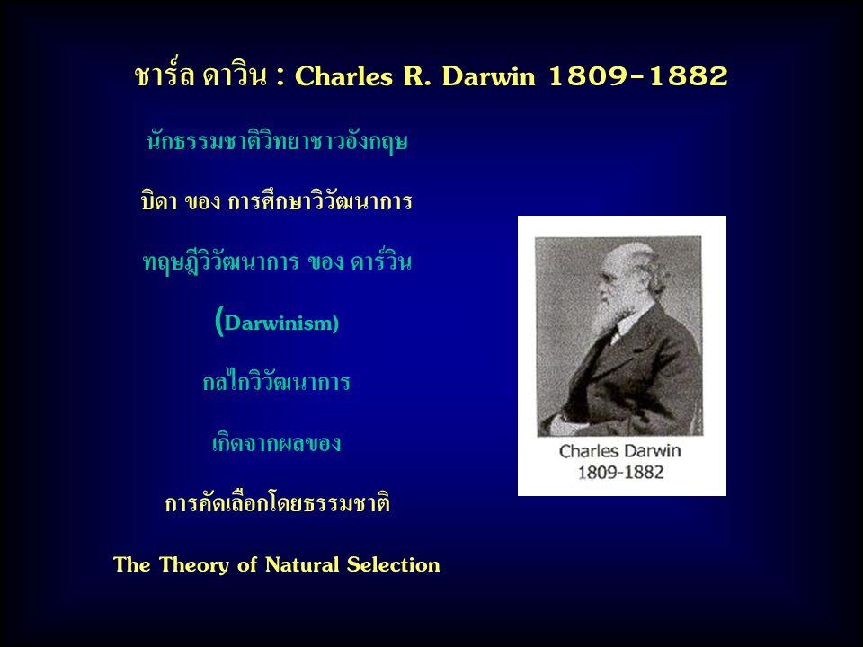 ชาร์ล ดาวิน : Charles R. Darwin 1809-1882