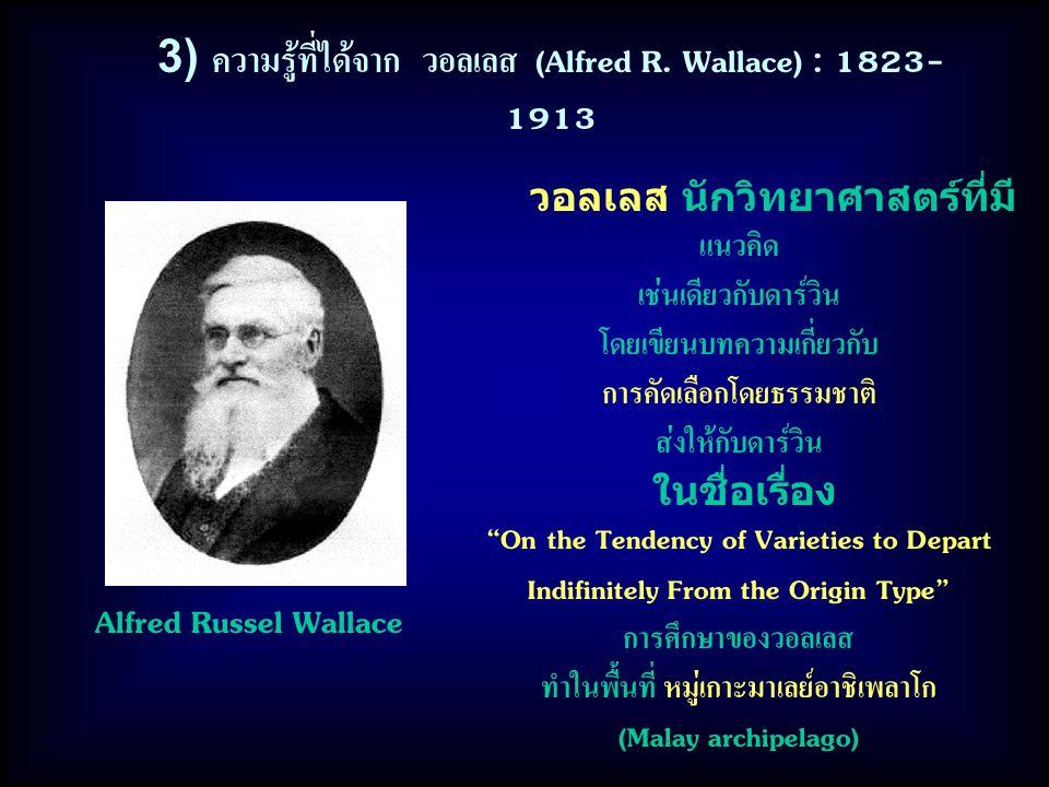 3) ความรู้ที่ได้จาก วอลเลส (Alfred R. Wallace) : 1823-1913