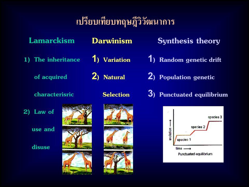 เปรียบเทียบทฤษฎีวิวัฒนาการ