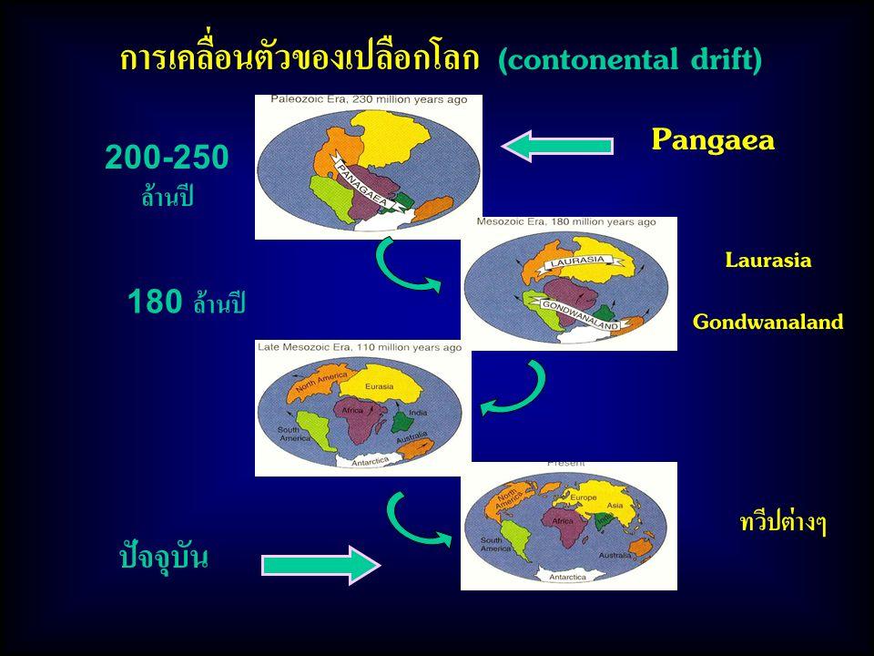 การเคลื่อนตัวของเปลือกโลก (contonental drift)