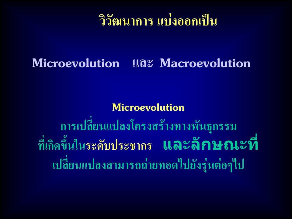 วิวัฒนาการ แบ่งออกเป็น การเปลี่ยนแปลงโครงสร้างทางพันธุกรรม