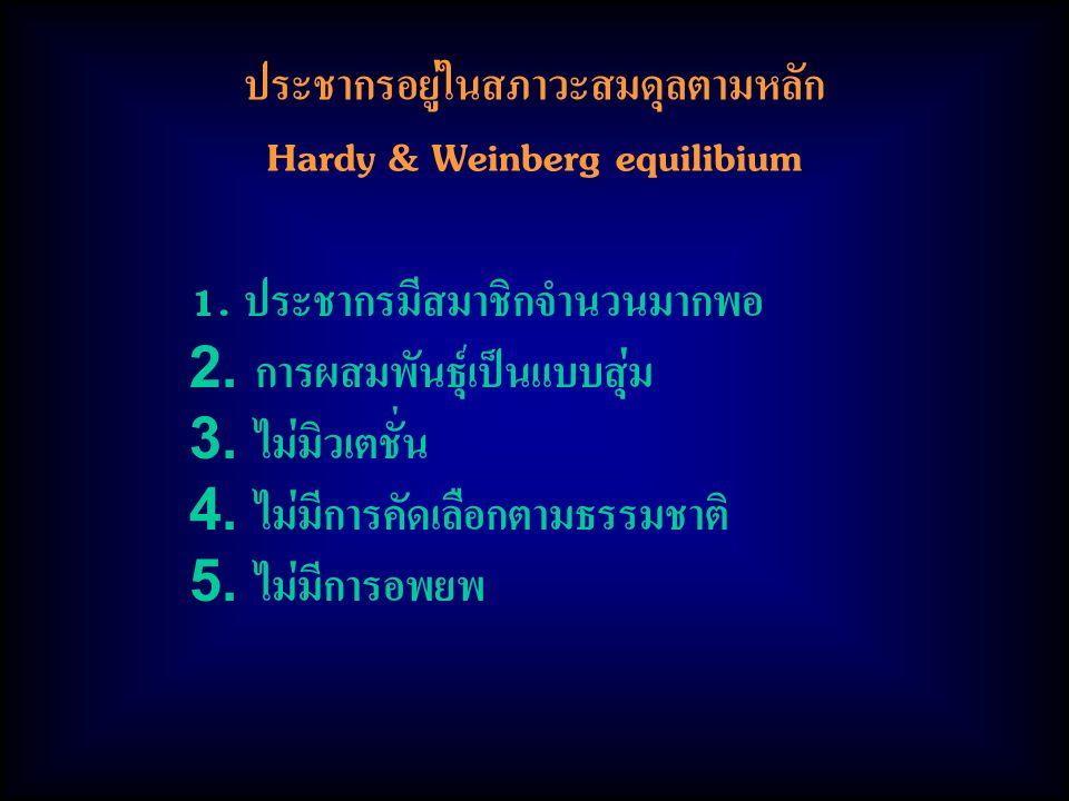 ประชากรอยู่ในสภาวะสมดุลตามหลัก Hardy & Weinberg equilibium